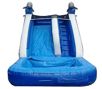 blue and white dolphin water slide